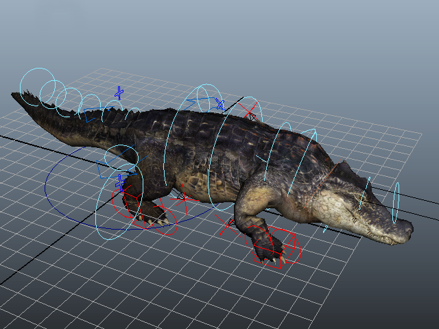 American Crocodile Rig 3d Model Autodesk Fbx Maya Files