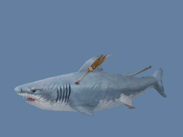 Toothless Shark 3d model