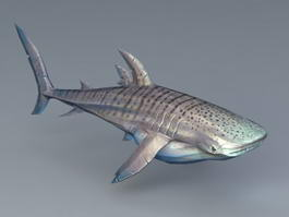 Shark 3d Model Free Download Cadnav Com