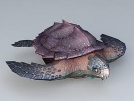 Deep Sea Turtle 3d model