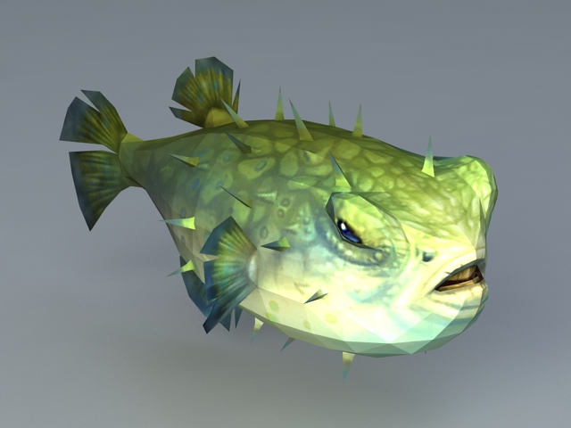 Tetraodontidae pufferfish 3d model