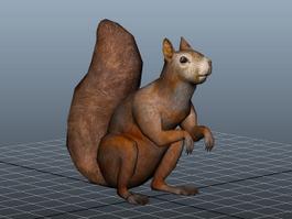 Fat Squirrel 3d model