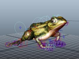 Brown Frog Rig 3d model