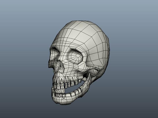 Human Skull 3d model Maya files free download - modeling 40687 on CadNav