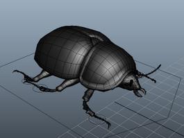Black Lawn Beetle Rig 3d model