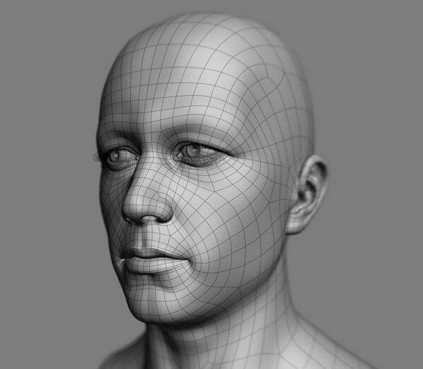 White Man Head 3d Model Object Files Free Download