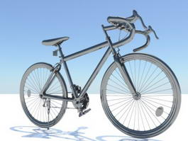 Expedition Touring Bicycle 3d model