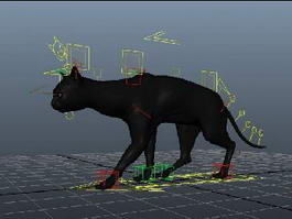 Black Cat Walk 3d model