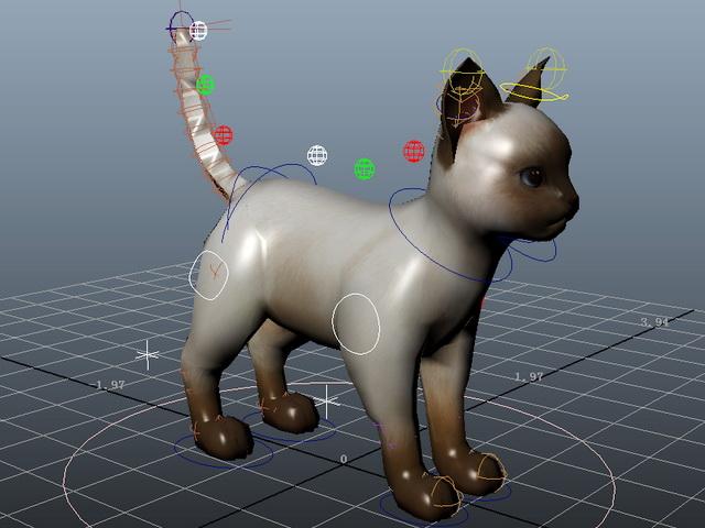 Domestic Cat Rig 3d model