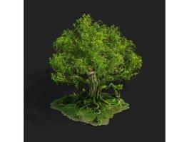 Big Towering Tree 3d model