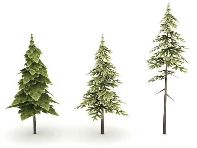 Pine Trees 3d Model 3ds Max Files Free Download Modeling