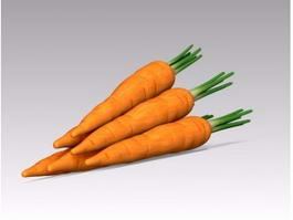 Carrot Vegetable 3d model