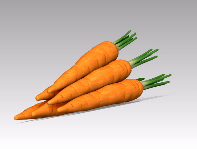 Carrot Vegetable 3d Model 3ds Max Object Files Free