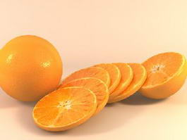Orange and Slices 3d model
