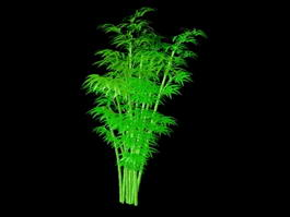 Green Bamboo Plants 3d model