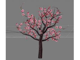 Ornamental Flowering Peach Tree 3d model
