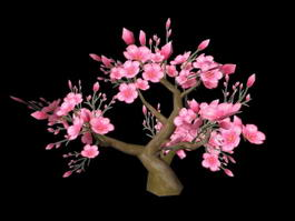 Dwarf Flowering Peach Tree 3d model