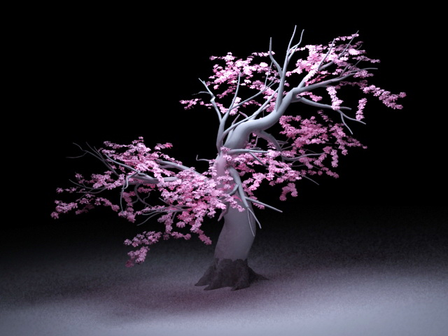 Old Peach Tree 3d model