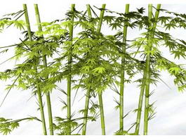 Tropical Bamboo Plants 3d model