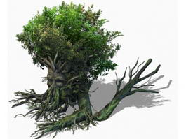 Fantasy Art Treant 3d model