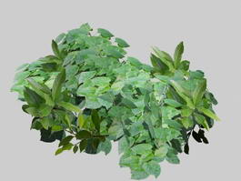Green Leaves 3d model