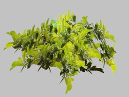Green Leaves and Tree Branch 3d model