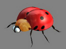 Ladybugs 3d model