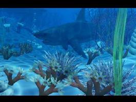 Ocean Underwater Shark 3d model