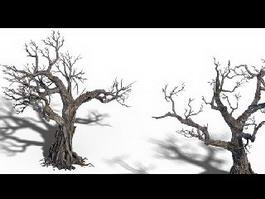 Two Dead Trees 3d model