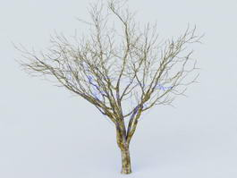 Tree Wrap Lights 3d model