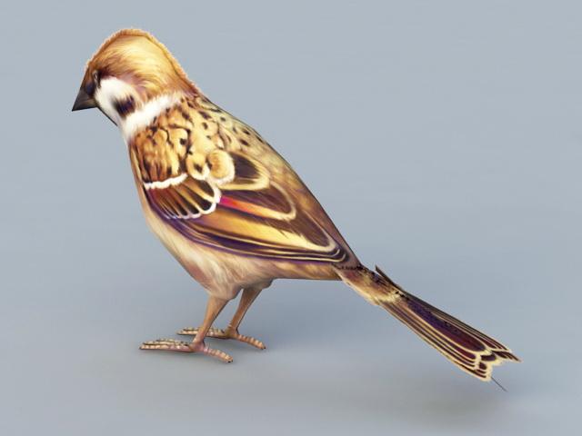 Sparrow Bird 3d Model 3ds Max Files Free Download