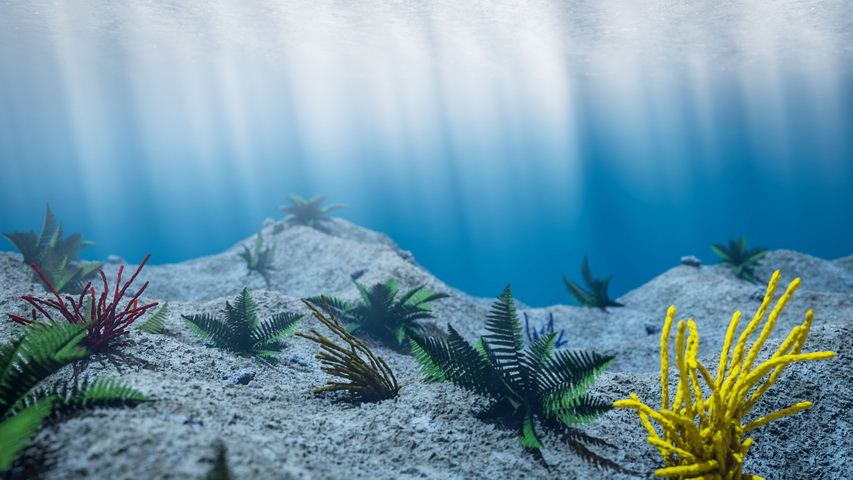 Underwater Scene 3d model Cinema 4D files free download ...