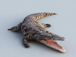 Animated Crocodile Rig 3d model