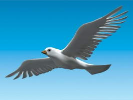 Flying Dove Bird 3d model