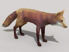Red Fox Animal 3d model