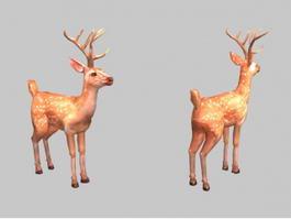 Male Sika Deer 3d model