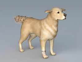 Guide Dog 3d model