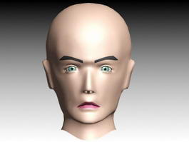 Male Head Facial Animation 3d model
