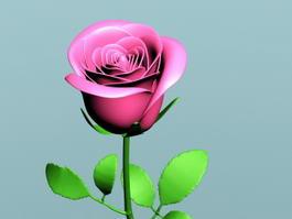 Pink Rose Branch 3d model