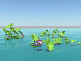 Lotus Flower Pond 3d model