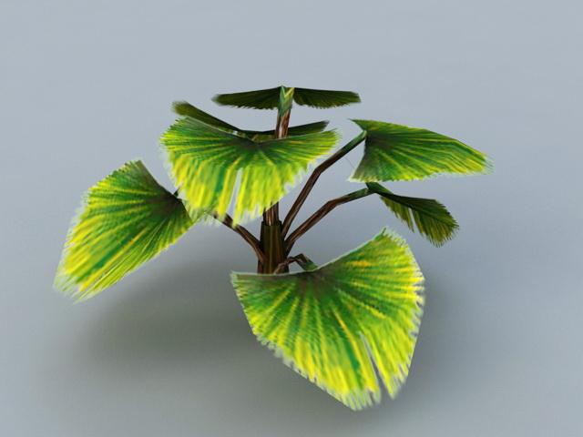 Low Poly Fan Palm Tree 3d model