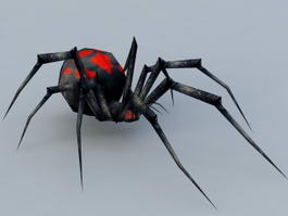 Night Black Widow Spider 3d model