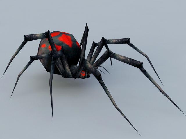 Night Black Widow Spider 3d rendering