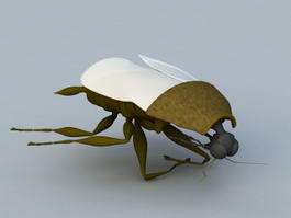 Giant Cockroach 3d model