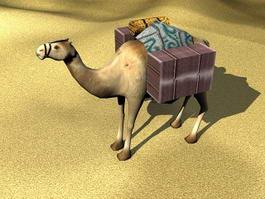 Desert Camel 3d model