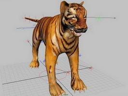 Tiger Rig 3d model