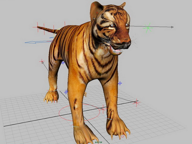 Tiger Rig 3d model Maya files free download - modeling 43136 on CadNav