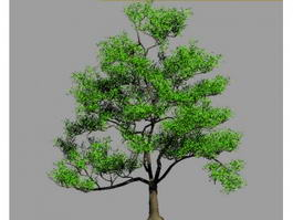 Trees 3d model free download - cadnav com