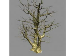 Winter Bare Tree 3d model