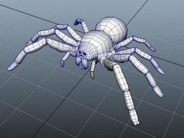 Giant Spider 3d model